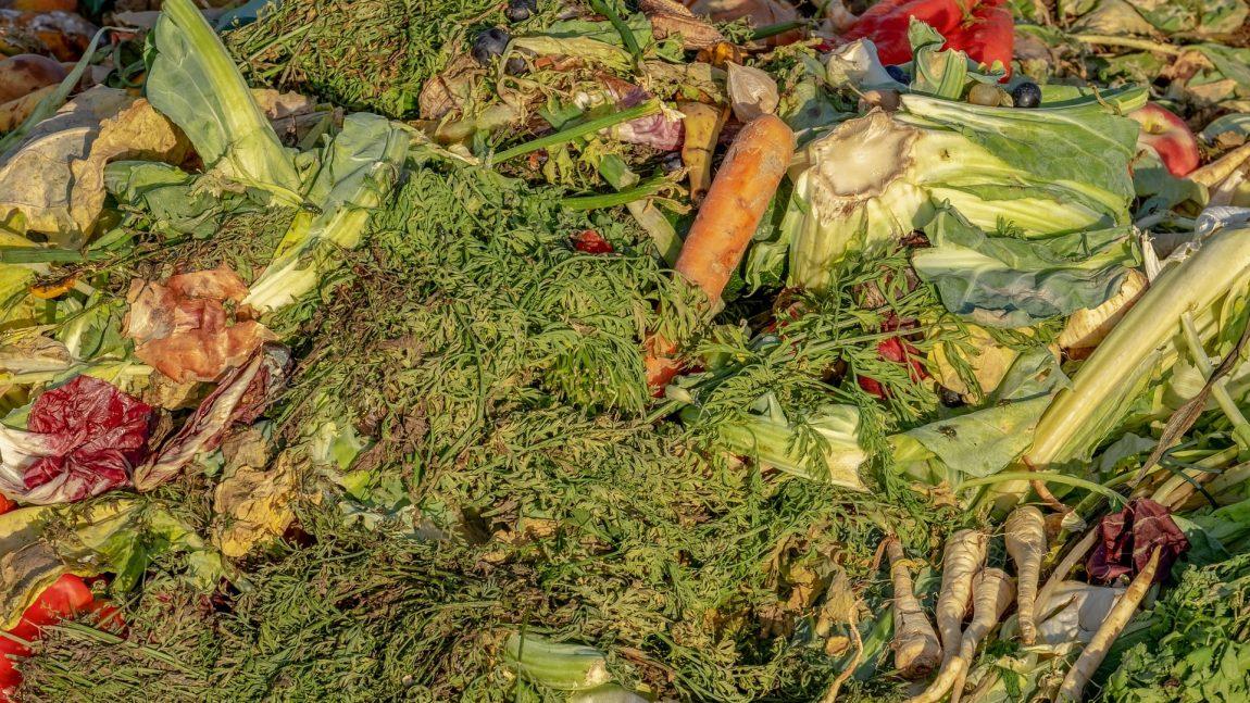 Sprechi di cibo elevati: ecco come ridurli con l'IoT